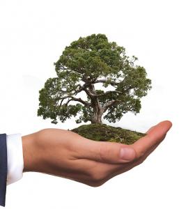 Empresas con responsabilidad social corporativa