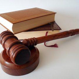 tipos de abogados