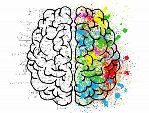 La parte creativa del ser humano se sitúa en el hemisferio derecho de nuestro cerebro y nos da la capacidad de innovar y salirnos de lo establecido