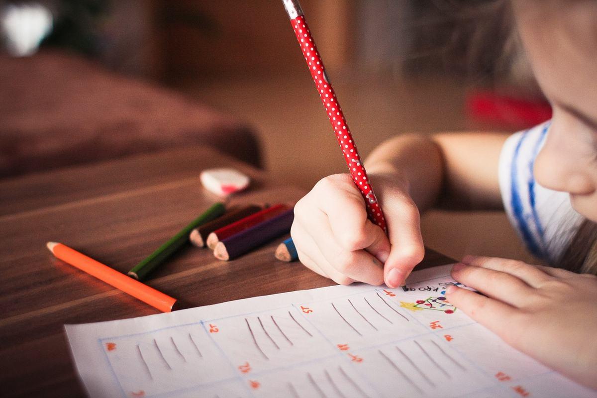 Aprende qué es la educación infantil y porqué estudiar esta profesión