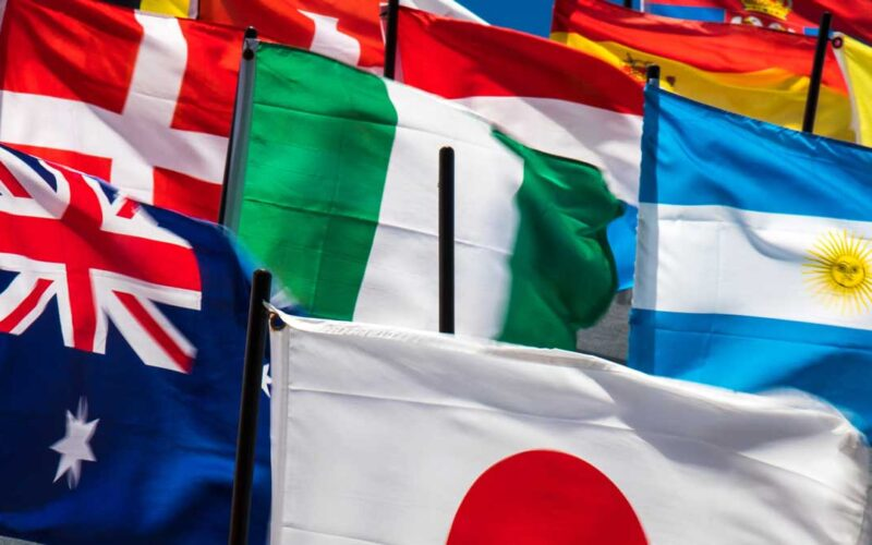 comercio internacional salidas laborales